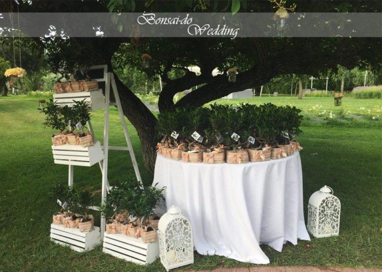 Bonsai-Do Wedding