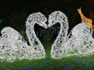 Luci d'Artista, a Salerno è amore splendente