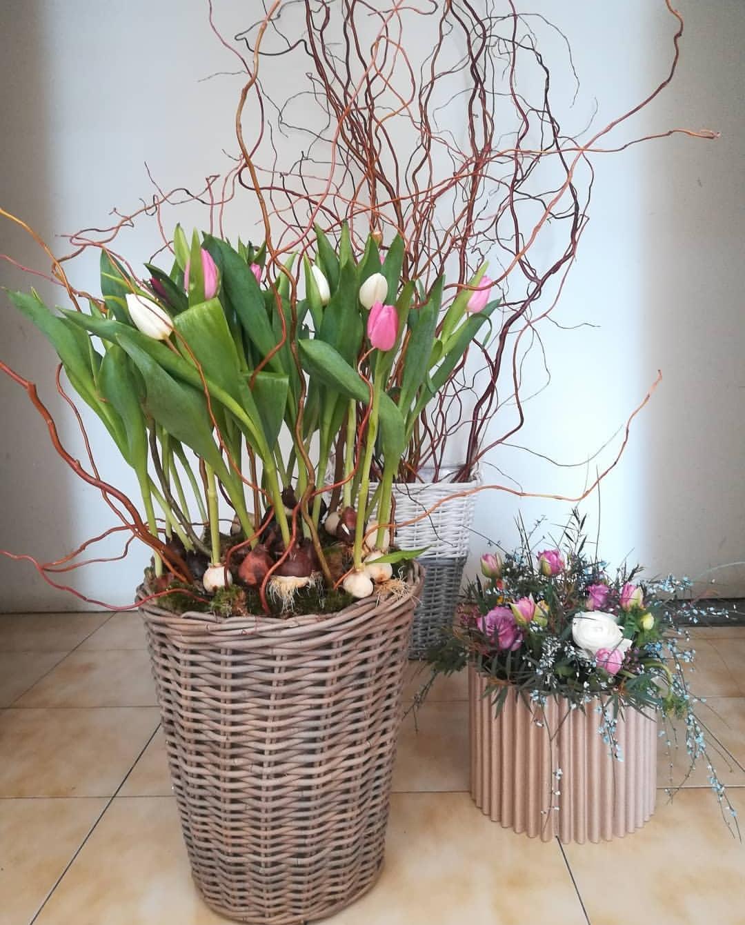 Ikebana di Finicola Sarro