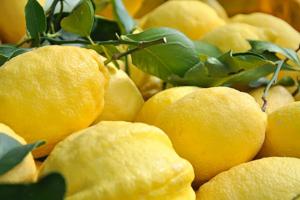 Amalfi: tra spiagge, storia e gli immancabili limoni